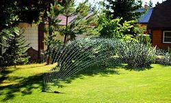 sw8 design a garden battersea